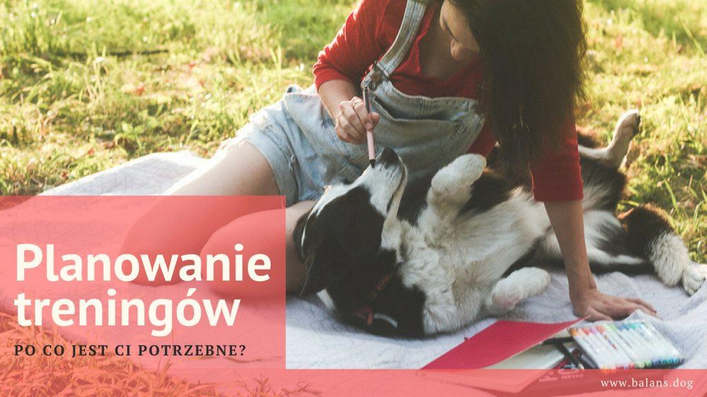 planowanie treningow z psem