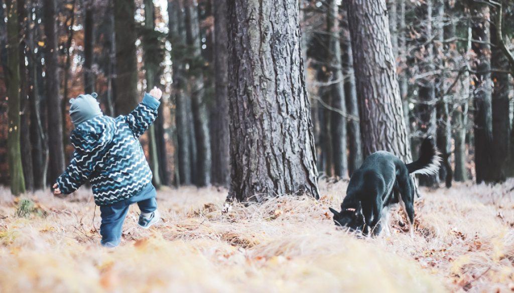 dziecko i pies na spacerze