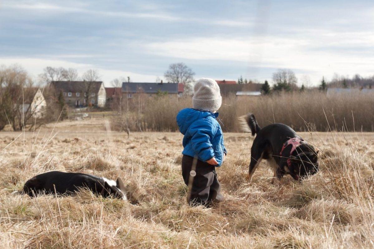 relacja pies i dziecko