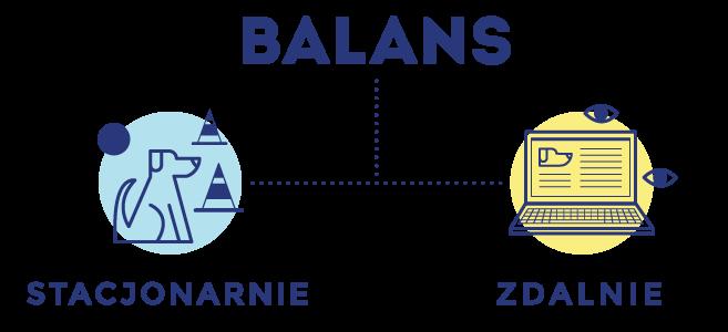 balans-stacjonarnie-zdalnie