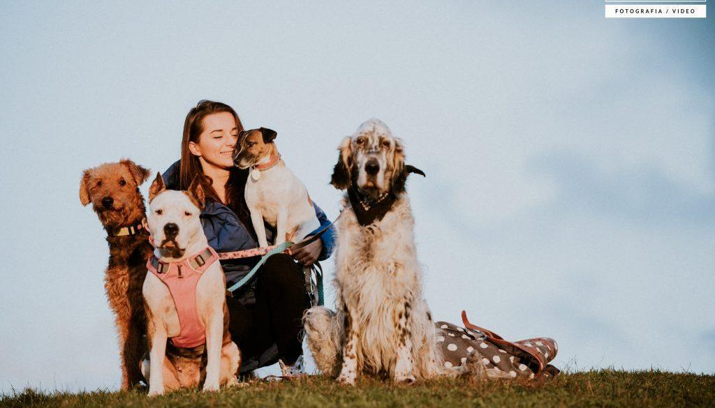 petsitter opiekun zwierząt