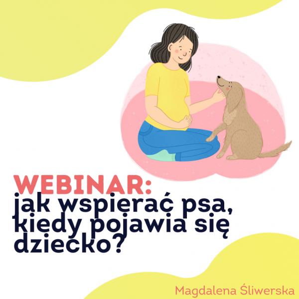 szkolenie: jak przygotować psa na dziecko?