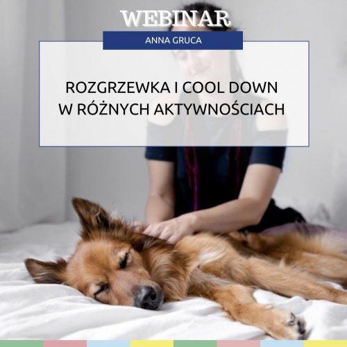 Rozgrzewka i cool down w różnych aktywnościach z psem