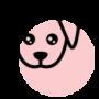 kameralnegrupy (do 4 psów)