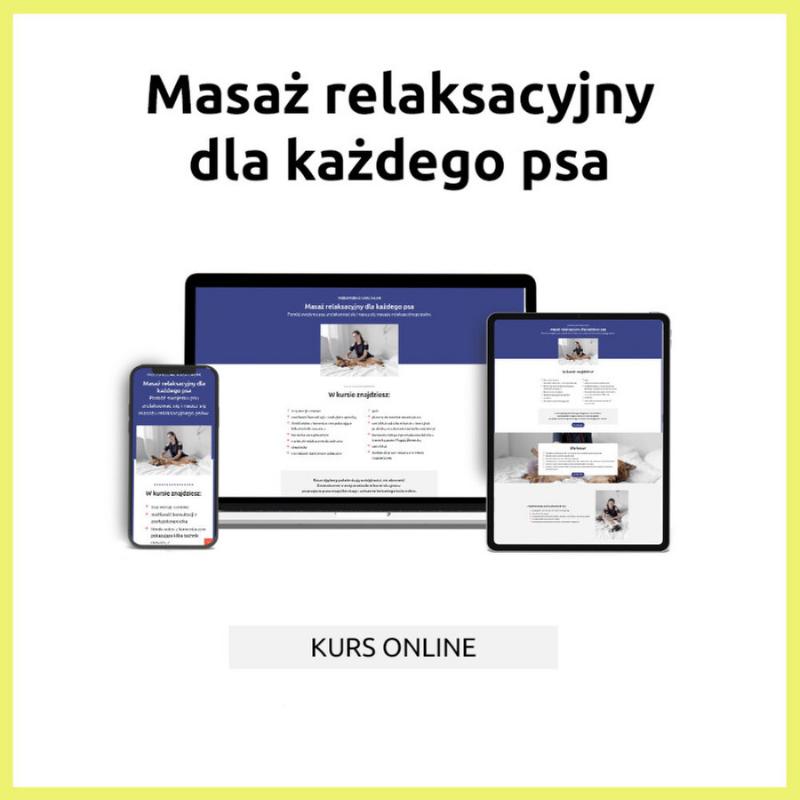 kursmasazDWA