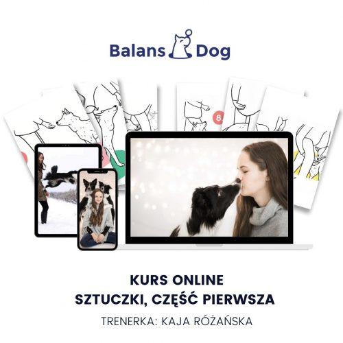 ilustracja kursu online